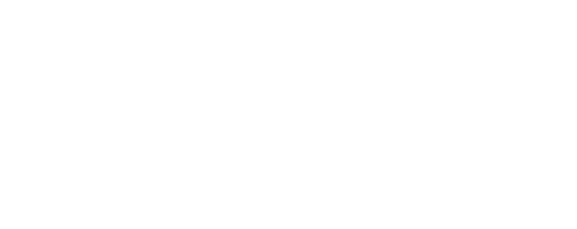 Finam Software & Solutions AG